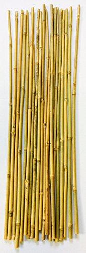 20 varillas de bambú. 60 cm / 6-8 mm diámetro