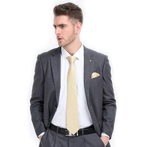 Hi-Tie Männer Klassische Krawatte Krawatte mit Manschettenknöpfe und Einstecktuch Krawattenset (Champagner Gold)