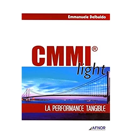 CMMI light: La performance tangible