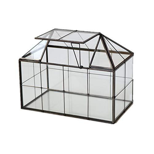 Humeng Terrario Plantas Geometría Poliédrico Cubo De Cristal Transparente de fabricación Artesanal para Cactus, suculentas o bonsáis Florero de Vidrio