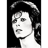 "Bowie David Black & White, Officially Licensed Original Artwork, Premium Quality MAGNET - 2.5"" x 3.5"""