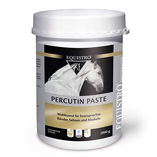 Equistro Percutin Paste 2 kg