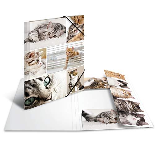 HERMA 19212 Sammelmappe DIN A4 Tiere Katzen aus stabilem Karton mit bedruckten Innenklappen, Gummizugmappe, Eckspanner-Mappe, 1 Zeichenmappe für Kinder (Sammelmappe Für A4)