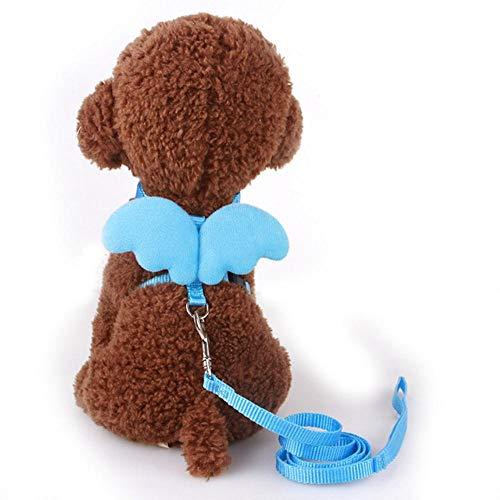 KIU Pet Leash Little Angel Brustgurt Flügel Set Cat Dog Leash Harness Milk Dog Kleines Hundeseil für Mini-Hunde, Blau, XS