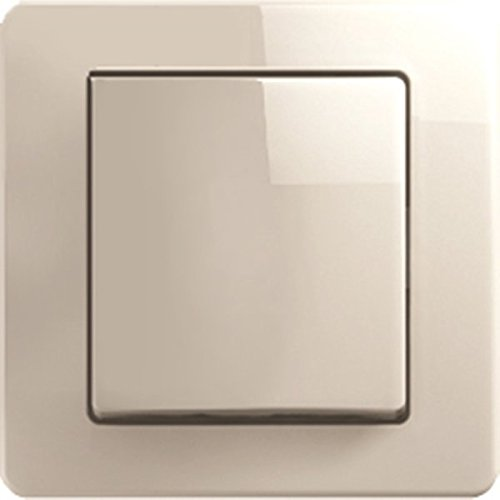 Interruptor de cambio de colour-brillo EKONOMIK 10AX 250 V