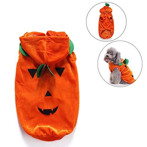 PIKVV Halloween Katze Kürbis Kostüm Pet Cosplay Kostüm Warme Kleidung Wolle Hoodie Tier Herbst Winter Tragen