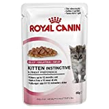 ROYAL CANIN Comida para Gatos Kitten Instinctive In Jelly 12 * 85gr