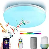 14'' LED Ceiling Light with Bluetooth Speaker, Wireless WiFi Ceiling Lamp,95V-265V, Compatible