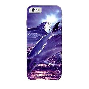 Hamee Designer Printed Hard Back Case Cover for Apple iPhone 5 / 5s / 5SE / SE Design 6074