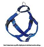 2 Hounds Design Freiheit Wags Whiskers Hundegeschirr gegen Zerren, 5/8Zoll, klein, Royal Blau
