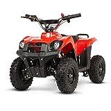 ECOXTREM Quad para niños, eléctrico, Infantil, Motor 800W, batería 36V,...