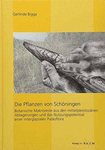 Die Pflanzen von Schöningen: Botanische Makroreste aus den mittelpleistozänen Ablagerungen und das Nutzungspotential einer interglazialen Paläoflora ... aus dem Tagebau von Schöningen, Band 3)