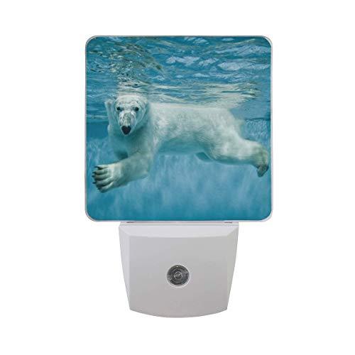 DFISKK Nachtlicht Set of 2 Polar Bear Swimming Underwater in Clear Blue Ocean Water Auto Sensor LED Dusk to Dawn Night Light Plug in Indoor for Adults -