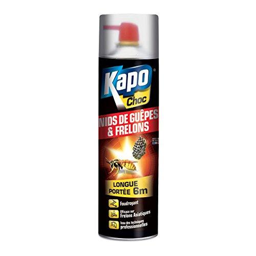 insecticide-longue-portee-special-nids-de-guepes-frelons-kapo-choc