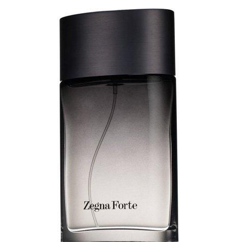 ermenegildo-zegna-forte-eau-de-toilette-uomo-50-ml