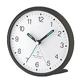 Acquista Analog-radio-sveglia TFA 60,1506,20 titan silenzioso-sweep-orologio