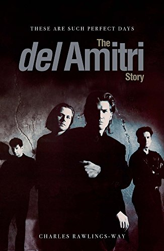 These Are Such Perfect Days: The Del Amitri Story por Charles Rawlings-Way
