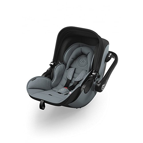Preisvergleich Produktbild kiddy 41920EV076 Babyschale Evolution Pro 2 Steel Grey
