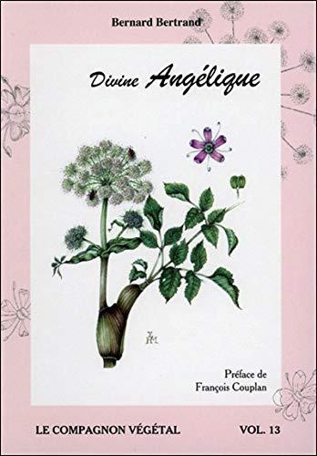 Divine Angélique - Vol. 13 par Bernard Bertrand