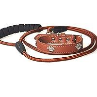 YXN Corde de Traction avec Empreinte de Patte pour Chien en Cuir Artificiel Collier Anti-Corrosion pour Animaux de Compagnie résistant à l'usure pour Tous Les Types d'animaux domestiques