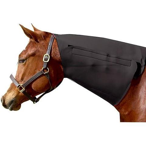Intrepid International collo in neoprene cavallo sudore, colore: nero
