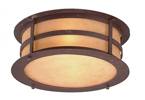2-Light Outdoor Flush Mount - Natural Bronze Finish with Seeded Amber Etched Glass by Troy ()