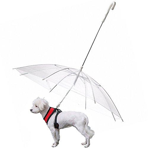 OMEM Paraguas de perro con correa para mascotas al aire libre a prueba