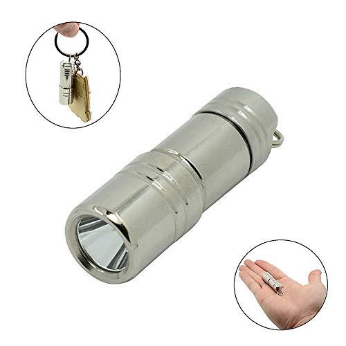 Pocket Mini Keychain Taschenlampe, WASAGA USB wiederaufladbare tragbare wasserdichte LED-Taschenlampe super kleine Lanterna mit Akku (Silber) Super Helle Led Keychain