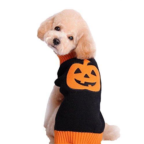 duoze-chien-pull-tricot-teddy-golden-petit-dans-les-grands-vetements-pour-chiensblack-xl