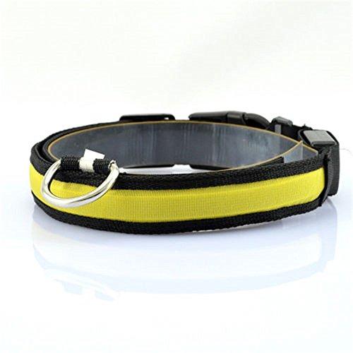 Preisvergleich Produktbild Kingnew LED Nylon Hund Katze Halsband Sicherheit Pet Light-Up blinkendes Leuchten leuchtend (S,  gelb)