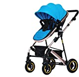 Best Pet 3 Wheel Strollers - AGGK Baby stroller High landscape Two-way Sitting SeatedLying Review