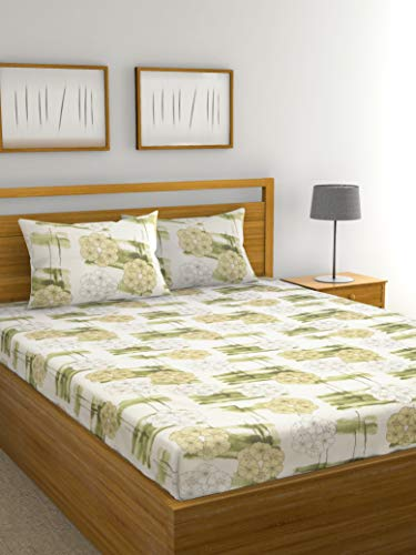 Raymond Home Double Bedsheet with 2 Pillow Cover (Pista)