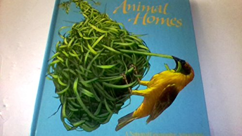 animal-homes-pop-up-book