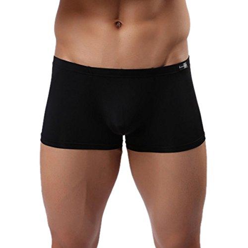 Panegy Herren Low Rise Transparent Glatt Nylon Boxershorts Boxer Briefs Unterwäsche Cool Atmungsaktiv Viskose Reizwäsche Größe XL - Schwarz