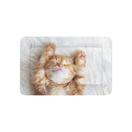 Faule Spaß Baby Katze Komfort Tier Extra Große Individuell Bedruckte Bettwäsche Weiche Hundebett Für Welpen Und Katzen Möbel Matte Cave Pad Abdeckung Kissen Indoor Geschenk Lieferanten 36 X 23 Zoll