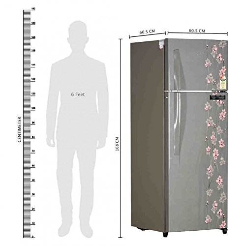 Godrej 290 L 3 Star Frost Free Double Door Refrigerator(RT Eon 290 P 3.4, Silver Meadow)