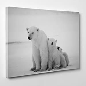 CADRE moderne sur la toile - ours polaire - Nature Animaux Ours Bear - 50x70cm - Epaisseur 2cm