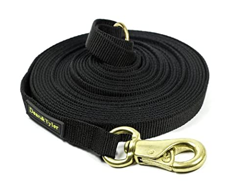 Dean & Tyler Track Single Ply Black Nylon 150-Feet by 3/4-Inch Dog Leash with a Ring on Handle and Massive Brass Snap