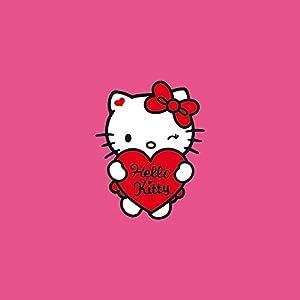 Nintendo DS Case Skin Sticker aus Vinyl-Folie Aufkleber Hello Kitty Merchandise Fanartikel Sweet Heart