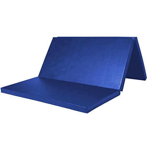 leapair-4x6x2-gymnastics-mat-exercise-mats-blue
