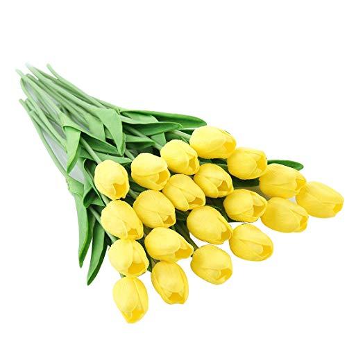 JUSTOYOU El tulipán Tiene un Toque Real