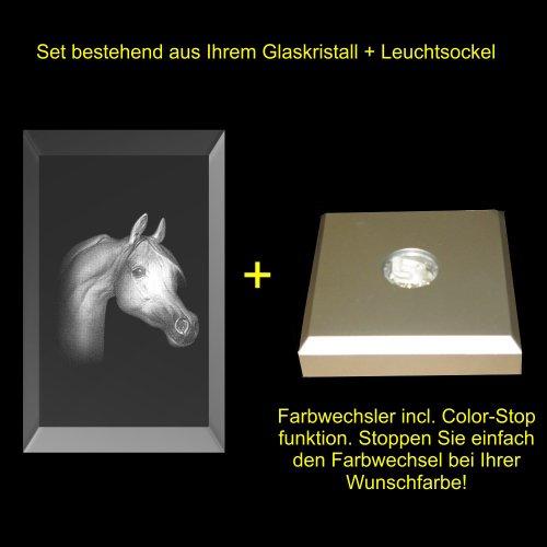 VIP del laser 3d vetro cristallo parallelepipedo XL testa di cavallo ritratto Mitten in den vetro cristallo inciso in 3d, Vetro, mit Color Leuchtsockel 5 LED Silber