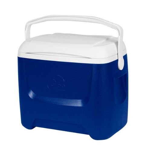 igloo-island-breeze-28-quart-26-litre-cool-box-for-camping-beach-catering-etc-by-igloo