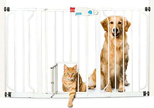 Carlson Extra Wide Walk Thru Gate With Pet Door White Dawgsome