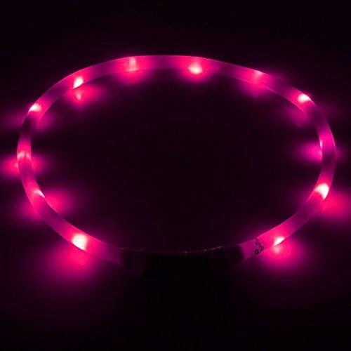 Hunde Leucht-Halsband LED-Leuchthalsband Leucht-Schlauch Sicherheitshalsband Blinklicht für Hunde und Katzen USB aufladbar keine Batterien mehr nötig von UC Express®, Farben:Pink