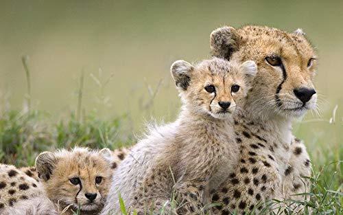 mant malerei runde Gepard Wilde Tier mosaik Dekoration Muster Stickerei handgemachtes Geschenk Spielzeug, 60x90 cm ()