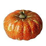 Justdolife Artificiale Zucca Realistica Realistica Halloween Artificiale Verdura Decorazioni per la Festa Verdura