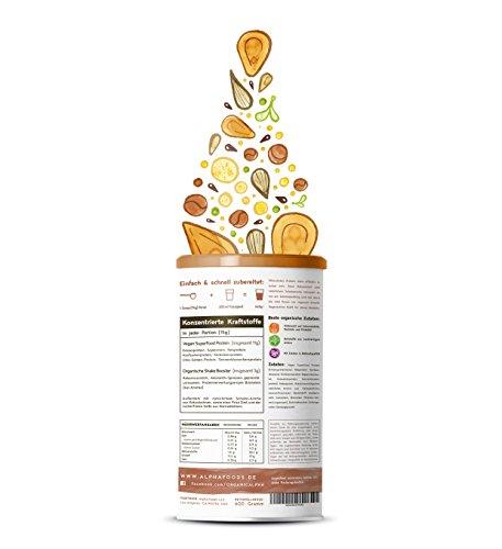 Vegan Protein (Schokolade) - Reis-, Hanf-, Soja-, Erbsen-, Chia-, Sonnenblumen- und Kürbiskernprotein + Kokosmilch, Superfoods und Verdauungsenzymen - 600 Gramm Pulver mit Schokoladengeschmack - 2