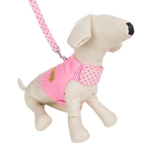 CueCue Hundegeschirr mit Leine, gepunktet, Pink