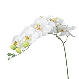 Planta de orquidea de simulacion – SODIAL(R) 1 pieza Decoracion de casa Planta de simulacion Flor orquidea mariposa…